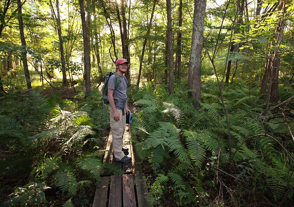 Brown's Lake Bog Preserve