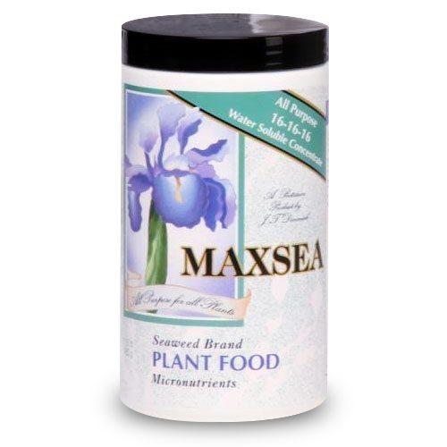 Maxsea 16-16-16 Carnivorous Plant Fertilizer
