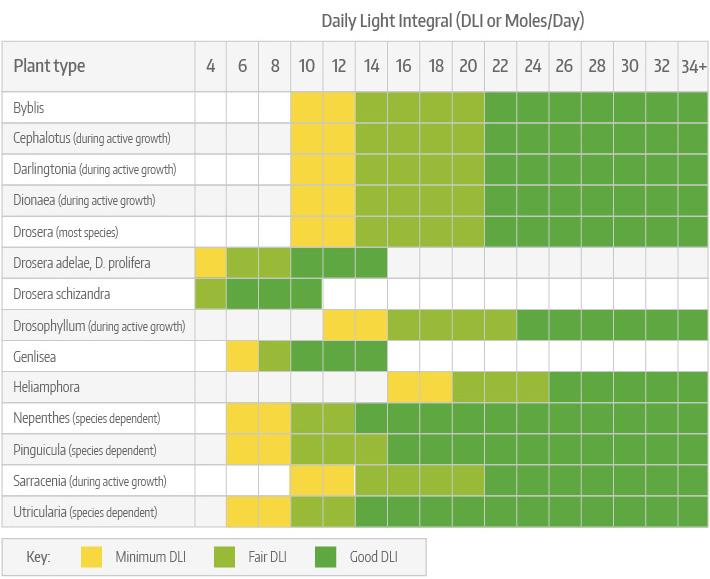 Daily Light Integral (DLI) for Carnivorous Plants