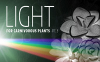 Which Grow Lights Are Best