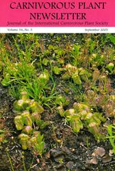 Carnivorous Plant Newsletter